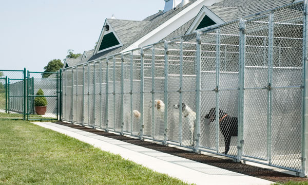home-kennel